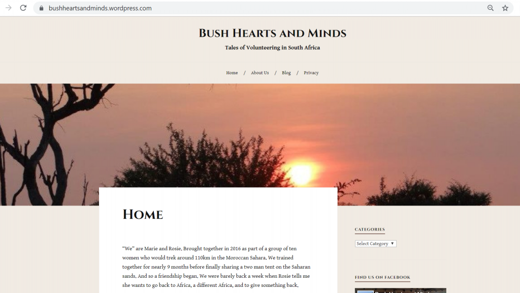 Excerpt of our blogging Bush Hearts